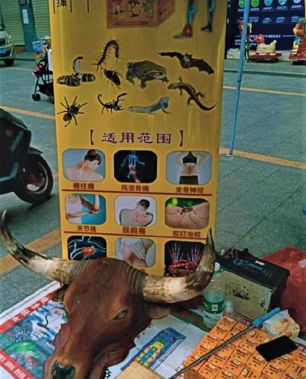 cinde-hayvan-pazarlari-yeniden-acildi_1631_dhaphoto2.jpg